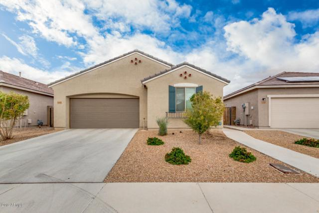 12112 W Tether Trail, Peoria, AZ 85383 (MLS #5879338) :: The Results Group