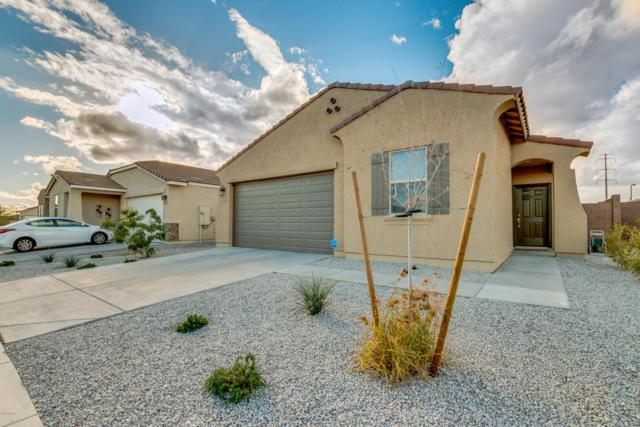 2168 S 237TH Drive, Buckeye, AZ 85326 (MLS #5879380) :: The Results Group