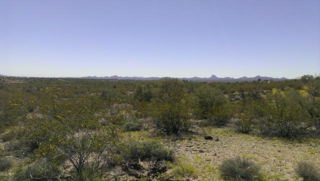 34755 S Nine Irons Road, Wickenburg, AZ 85390 (MLS #5879402) :: The Bill and Cindy Flowers Team
