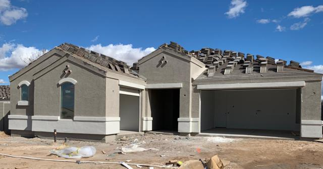 708 W Welsh Black Trail, San Tan Valley, AZ 85143 (MLS #5879413) :: Yost Realty Group at RE/MAX Casa Grande