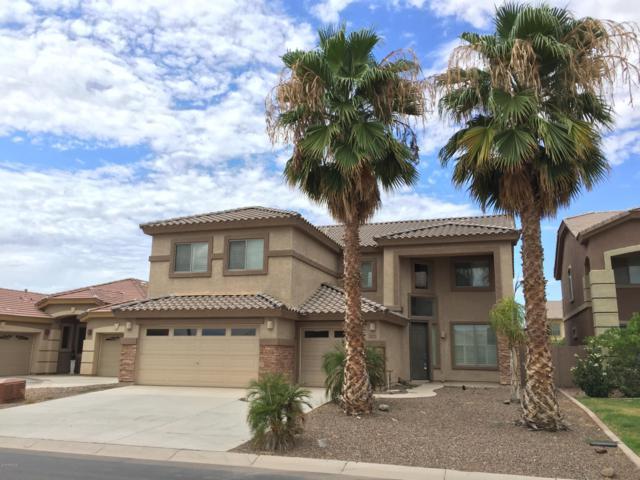 44016 W Mescal Street, Maricopa, AZ 85138 (MLS #5879503) :: Yost Realty Group at RE/MAX Casa Grande