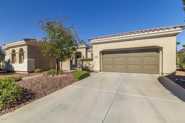 22824 N Padaro Drive, Sun City West, AZ 85375 (MLS #5879522) :: Yost Realty Group at RE/MAX Casa Grande