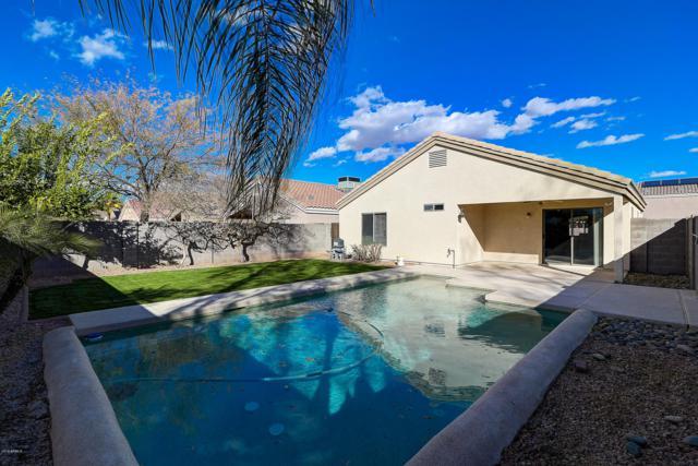 14106 N 130TH Lane, El Mirage, AZ 85335 (MLS #5879545) :: The W Group