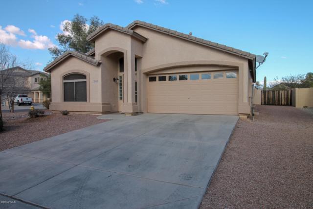 29193 N Rosewood Drive, San Tan Valley, AZ 85143 (MLS #5879563) :: The Pete Dijkstra Team