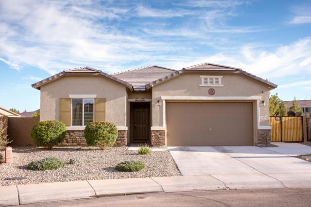 42019 W Somerset Drive, Maricopa, AZ 85138 (MLS #5879622) :: The Everest Team at My Home Group
