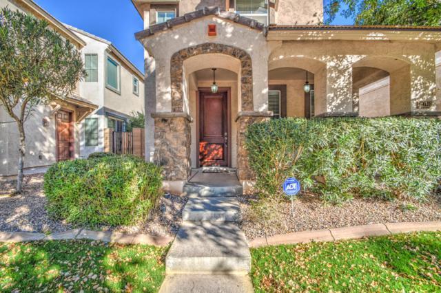 4120 E Vest Avenue, Gilbert, AZ 85295 (MLS #5879628) :: The W Group