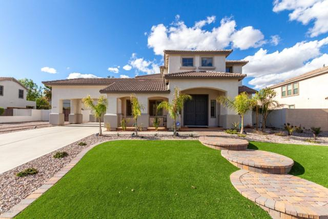 18 E Paso Fino Way, San Tan Valley, AZ 85143 (MLS #5879668) :: Yost Realty Group at RE/MAX Casa Grande