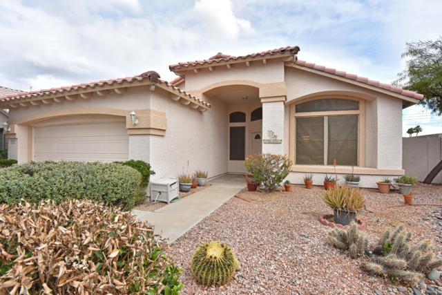 16401 N 39TH Place, Phoenix, AZ 85032 (MLS #5879740) :: Lucido Agency