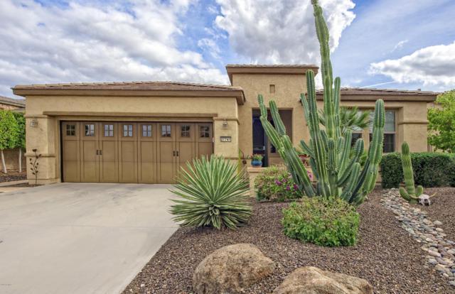 27741 N 129TH Lane, Peoria, AZ 85383 (MLS #5879743) :: The Pete Dijkstra Team