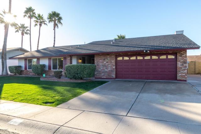 21 E Angela Drive, Phoenix, AZ 85022 (MLS #5879749) :: Yost Realty Group at RE/MAX Casa Grande