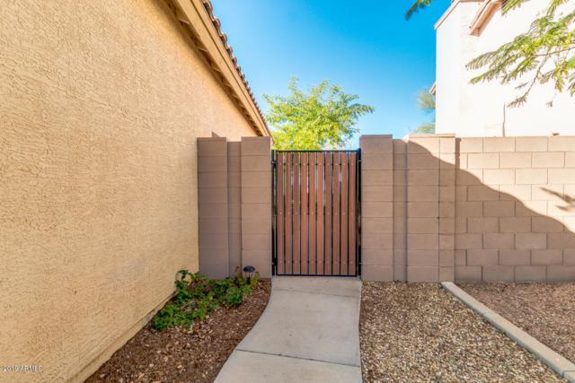 10366 W Amelia Avenue, Avondale, AZ 85392 (MLS #5879777) :: The W Group