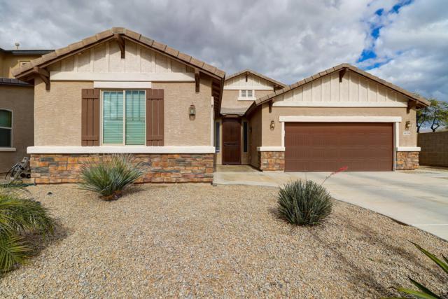 16128 W Desert Flower Drive, Goodyear, AZ 85395 (MLS #5879834) :: CC & Co. Real Estate Team