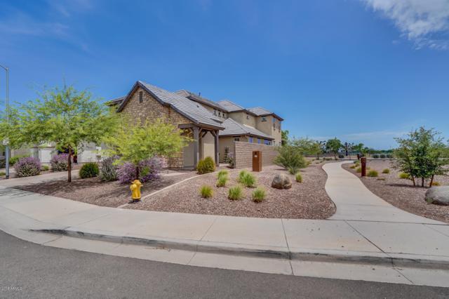 21917 N 97TH Drive, Peoria, AZ 85383 (MLS #5879848) :: Kepple Real Estate Group