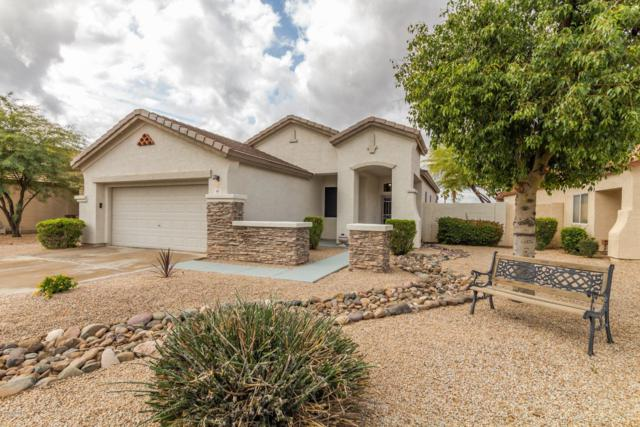 892 S Roanoke Street, Gilbert, AZ 85296 (MLS #5879849) :: The Everest Team at My Home Group