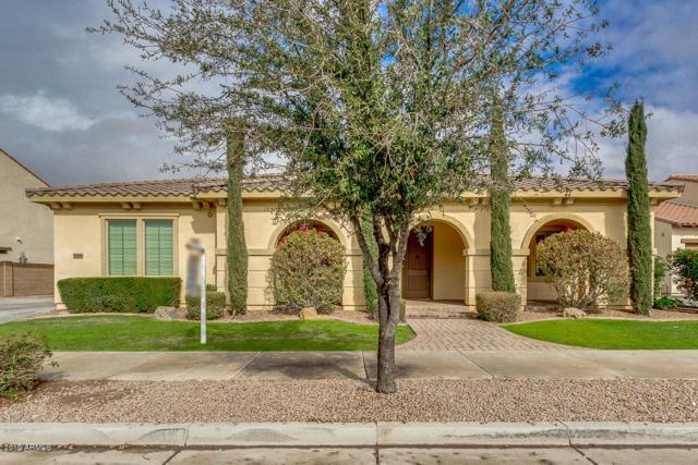 21262 E Via De Arboles, Queen Creek, AZ 85142 (MLS #5879859) :: The W Group