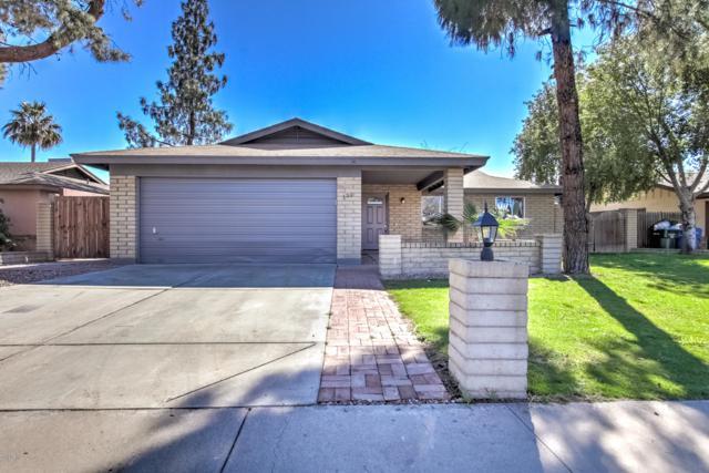 131 W Wagoner Road, Phoenix, AZ 85023 (MLS #5879867) :: The C4 Group