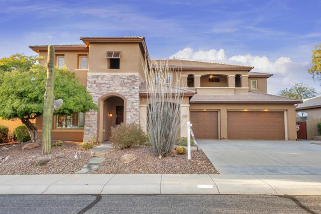 2158 W Cohen Court, Phoenix, AZ 85086 (MLS #5879869) :: The Jesse Herfel Real Estate Group
