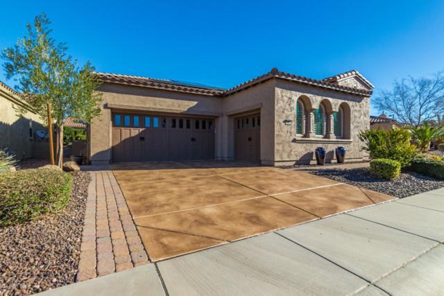 12858 W Alyssa Lane, Peoria, AZ 85383 (MLS #5879873) :: RE/MAX Excalibur