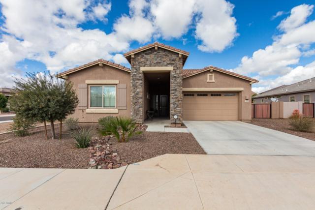 1104 E Tekoa Avenue, Gilbert, AZ 85298 (MLS #5879889) :: Occasio Realty