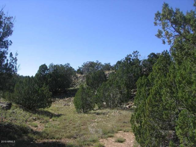 Lot 735 Chevelon Canyon Ranch, Heber, AZ 85928 (MLS #5879891) :: Phoenix Property Group