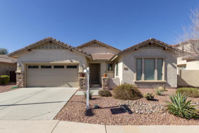 3240 S Holguin Way, Chandler, AZ 85248 (MLS #5879900) :: RE/MAX Excalibur