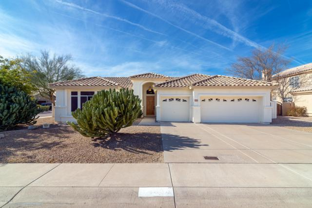 14038 S 34TH Street, Phoenix, AZ 85044 (MLS #5879905) :: CC & Co. Real Estate Team