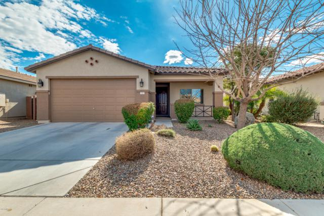 177 W Dragon Tree Avenue, San Tan Valley, AZ 85140 (MLS #5879941) :: Lucido Agency