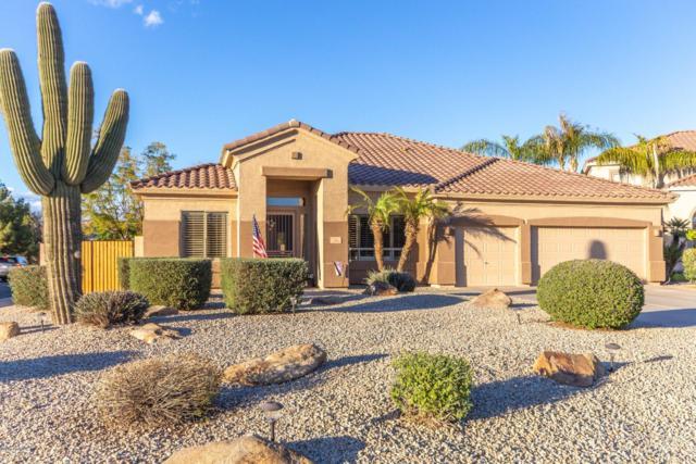1560 E Appaloosa Court, Gilbert, AZ 85296 (MLS #5879959) :: Yost Realty Group at RE/MAX Casa Grande