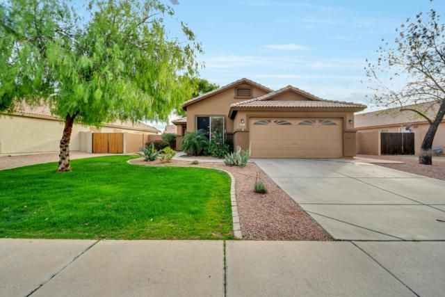 147 W Loma Vista Street, Gilbert, AZ 85233 (MLS #5880004) :: The Property Partners at eXp Realty
