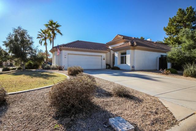 14126 W Bent Tree Circle N, Litchfield Park, AZ 85340 (MLS #5880022) :: The W Group
