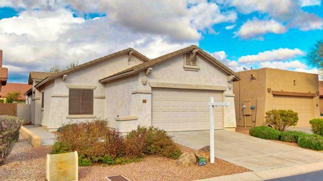 10736 E Peralta Canyon Drive, Gold Canyon, AZ 85118 (MLS #5880057) :: CC & Co. Real Estate Team