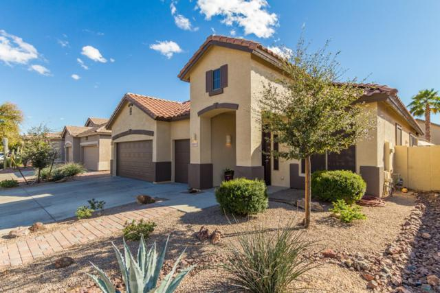 13575 W Acapulco Lane, Surprise, AZ 85379 (MLS #5880064) :: Arizona 1 Real Estate Team