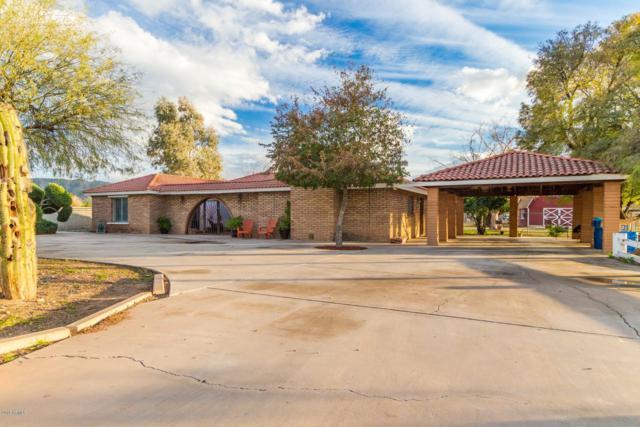 4535 W Euclid Avenue, Laveen, AZ 85339 (MLS #5880090) :: Yost Realty Group at RE/MAX Casa Grande