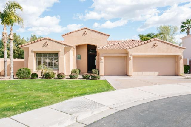 4291 S Purple Sage Place, Chandler, AZ 85248 (MLS #5880183) :: Yost Realty Group at RE/MAX Casa Grande