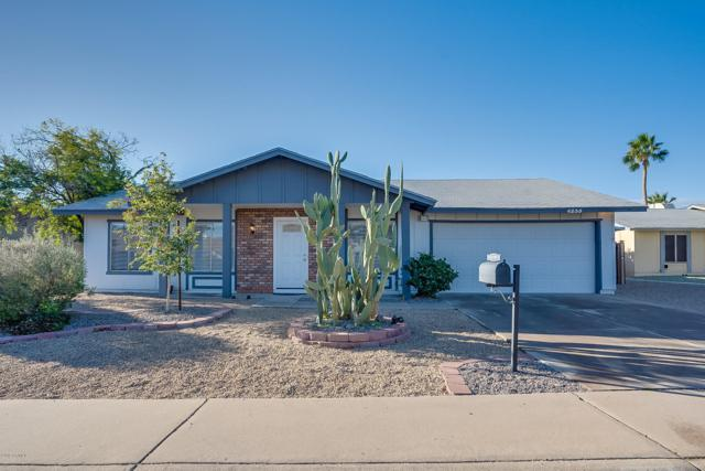 4235 E Yowy Street, Phoenix, AZ 85044 (MLS #5880242) :: Kepple Real Estate Group