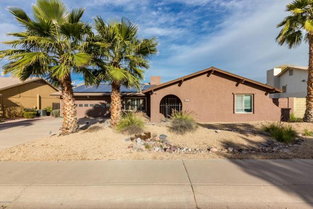 8910 E Sheena Drive, Scottsdale, AZ 85260 (MLS #5880248) :: The W Group