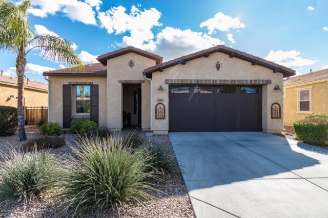 831 E Laddoos Avenue, San Tan Valley, AZ 85140 (MLS #5880275) :: Conway Real Estate