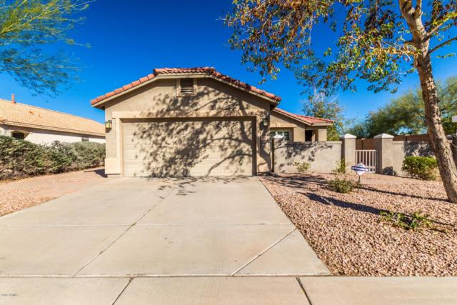 1014 E Milada Drive, Phoenix, AZ 85042 (MLS #5880276) :: Gilbert Arizona Realty
