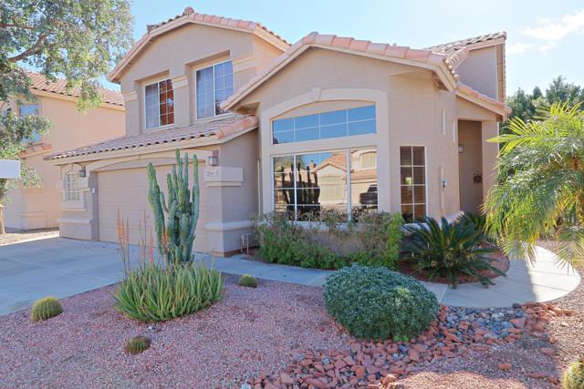 20414 N 17TH Way, Phoenix, AZ 85024 (MLS #5880277) :: Yost Realty Group at RE/MAX Casa Grande
