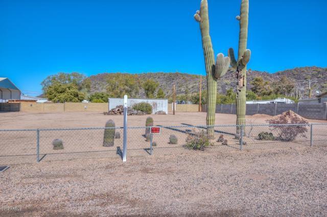 2912 W Robin Lane, Phoenix, AZ 85027 (MLS #5880289) :: Yost Realty Group at RE/MAX Casa Grande