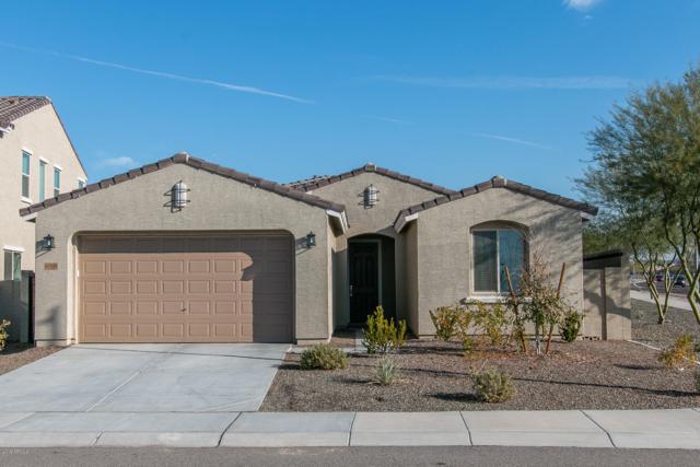 10708 W Realgar Road, Peoria, AZ 85383 (MLS #5880343) :: CC & Co. Real Estate Team