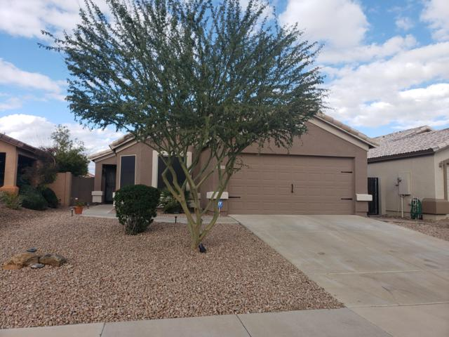 3784 W Carlos Lane, Queen Creek, AZ 85142 (MLS #5880351) :: The Everest Team at My Home Group