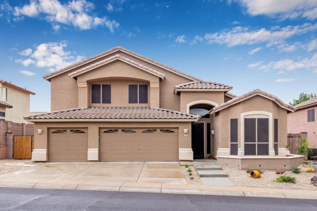 1725 E Beaubien Drive, Phoenix, AZ 85024 (MLS #5880448) :: Yost Realty Group at RE/MAX Casa Grande