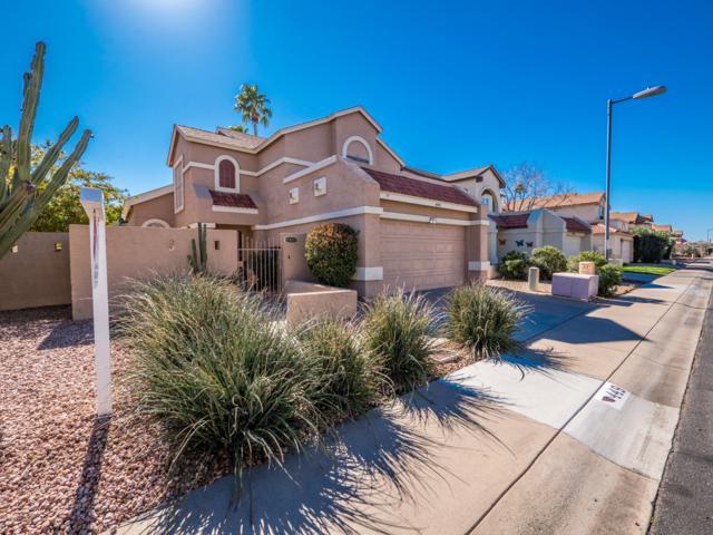 449 E Kristal Way, Phoenix, AZ 85024 (MLS #5880484) :: RE/MAX Excalibur