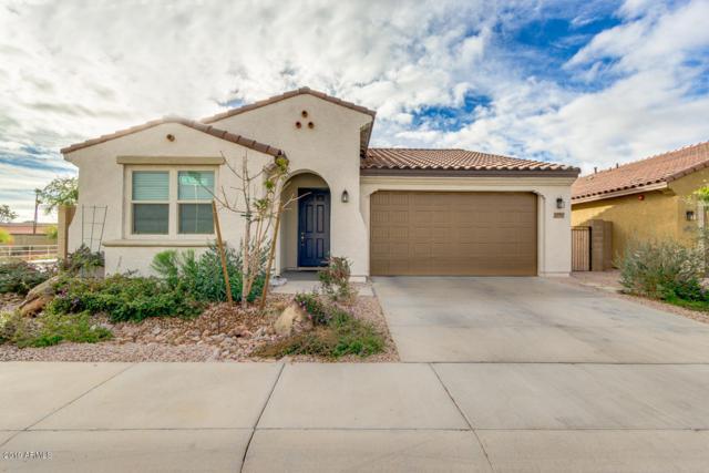 10903 W Edgewood Drive, Sun City, AZ 85351 (MLS #5880504) :: The Laughton Team