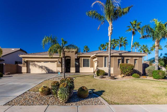 3088 E Juanita Avenue, Gilbert, AZ 85234 (MLS #5880675) :: Yost Realty Group at RE/MAX Casa Grande