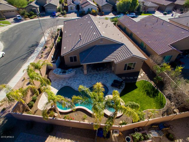 660 W Grand Canyon Drive, Chandler, AZ 85248 (MLS #5880677) :: Lucido Agency