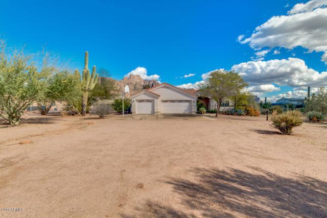 721 N Val Vista Road, Apache Junction, AZ 85119 (MLS #5880688) :: Yost Realty Group at RE/MAX Casa Grande