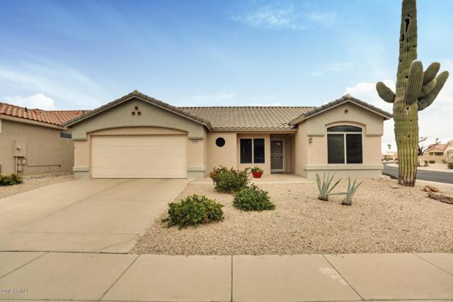 21765 N Limousine Drive, Sun City West, AZ 85375 (MLS #5880800) :: Keller Williams Realty Phoenix