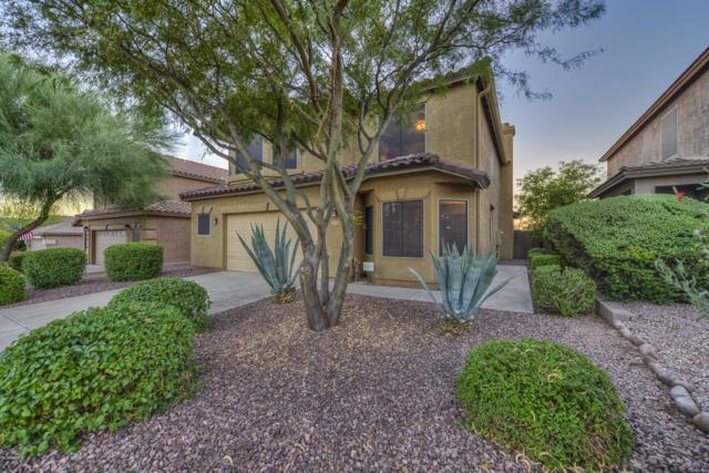 7432 E Christmas Cholla Drive, Scottsdale, AZ 85255 (MLS #5880815) :: The Pete Dijkstra Team